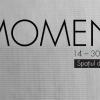 """Momentum"" la Aiurart"