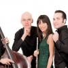 """Maxim Quartet deschide ediția 61 a Festivalului """"Săptămânile Europene"""" din Passau"""