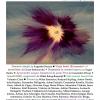 Revista Contact Internațional, la o nouă apariție