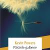 """Păsările galbene"" de Kevin Powers premiat de Le Monde"