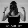 """Gabriela Stoica vernisează """"Mimicry"""" în Mica Galerie a Institutului Român de la Veneţia"""