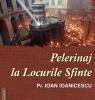 """""""Pelerinaj la Locurile Sfinte"""" de Pr. Ioan Iaonicescu"""