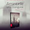 """""""Amintirile unui însingurat"""" de Nicolae Sirius"""