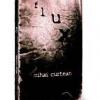 """flux"" de Mihai Curtean"