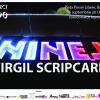 """""""Proiect 1990"""": """"Ninel"""", de Virgil Scripcariu"""