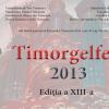Timorgelfest 2013