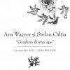 """Pictorul Ștefan Câlția și Ana Wagner lansează colecţia """"Grădina dintre ape"""""""