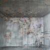 """Expoziţia de pictură """"embryos"""", de Ştefan Petrică, expusă la Galeria Calina"""