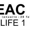 """Felix Deac expune """"Artificial life 1"""", la Timișoara"""
