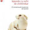 """""""Iepurele cu ochi de chihlimbar"""", de Edmund de Waal, în traducerea Ioanei Aneci"""
