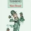 """Romanul """"Matei Brunul"""", de Lucian Dan Teodorovici, tradus în Turcia"""
