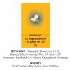 """Irina Pavlovici lansează """"cu dragoste despre un popor de cuci"""", la Bookfest"""