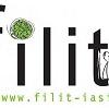 Herta Müller, David Lodge, Norman Manea și Mircea Cărtărescu, la FILIT