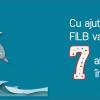 FILB participă la Swimathon București, ediția 2014