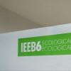 Cafeneaua critică: despre IEEB6