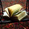 "Call for poets: ""Inefabilul iubirii"", antologie de poezie de dragoste"