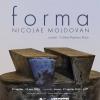 "Nicolae Moldovan expune ""Forma"""