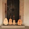 Recitaluri inedite, la Palatul Mogoșoaia