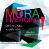 Open call pentru artişti tineri şi aflaţi la debut