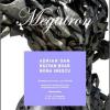 "Expoziţia ""Megatron"", la Galeria ICR Viena"