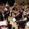 Romanian Sinfonietta, în concert la Berlin