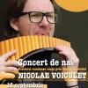 Concert de nai – Nicolae Voiculeţ, în grădina ICR