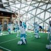 """Expoziția interactivă """"Magii fotbalului şi jonglerii mingii, acasă şi în lumea largă"""", la Centrul Comunitar Evreiesc"""