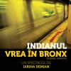 """Spectacolul """"Indianul vrea în Bronx"""", în regia Iarinei Demian, cu Paul Ipate şi Anghel Damian, deschide """"Luna artEST"""""""