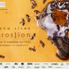 Expoziția (EROS)ION de Ioana Sisea, la Galeria Galateca
