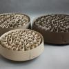 """Expoziţia internaţională de ceramicǎ contemporanǎ, """"Conexiuni Interioare / Inner Connections"""", la Galeria Galateea"""