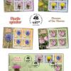 Flori cu spini ilustrate pe timbrele românești