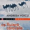 Două apariții editoriale de excepție, la Editura Paralela 45