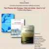 Poeme de Elena Liliana Popescu în ediții multilingve, la Institutul Cultural Român