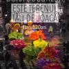 De 20 de ani, Arcub îți arată Bucureștiul altfel