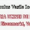 """Romulus Vasile Ioan lansează """"Istoria uzinei de fier"""""""