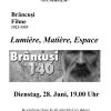 """""""Lumière, Matière, Espace"""": film de Brâncuşi, la Cinemateca ICR Viena"""