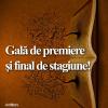 Premiile Cafenelei critice, la finalul stagiunii 2015-2016