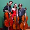 """Duo Cello Jaya și Adrian Mantu, în turneul """"The Three Cellists"""" din Irlanda"""