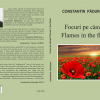 """Focuri pe câmpii /Flames in the fields"", de Constantin Pădureanu"