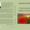 """""""Focuri pe câmpii /Flames in the fields"""", de Constantin Pădureanu"""