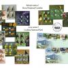 Rarităţi ale naturii, pe timbrele româneşti