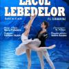 """Compania celebrului balerin rus Andrei Batalov dansează """"Lacul lebedelor"""", la Timișoara"""