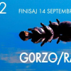 """""""Izvorul 2"""", Dumitru Gorzo / Gheorge Rasovszky"""
