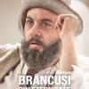"""Proiecţia filmului """"Brâncuși din eternitate"""",  la Cinemateca ICR Viena"""
