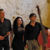 Două concerte de jazz cu Ramona Horvath Trio, la Viena