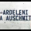 """Proiecția documentarului """"Ardeleni la Auschwitz"""", la Galeria Întâlnirilor"""