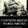 """Expoziție foto-documentară: """"Constantin Brâncuși – Pasărea măiastră"""""""