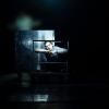 """Spectacolul """"Dansând în noapte"""", în cadrul FNT 2016"""