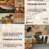 """Vernisajul expoziției """"Itinerarii exotice"""", la Galeria Dialog"""