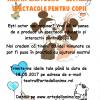 Concursuri de proiecte la Teatrul Arte dell'Anima